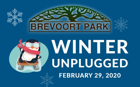 Winter Unplugged!
